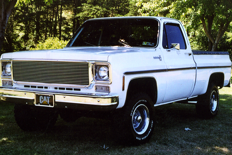 1978 Chevy Truck Image Details