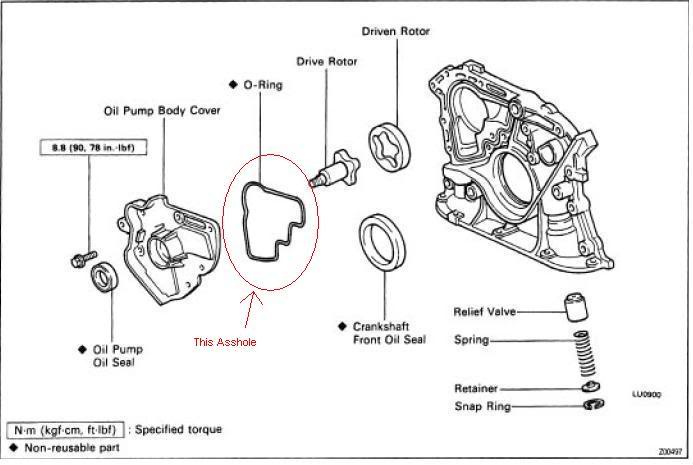 Diagram Of Fuse Box For 1990 Ford Tempo further 98 Ranger Fuse Diagram 98 Automotive Wiring Diagrams Within 97 Ford Ranger Fuse Box Diagram also 98 Ford Taurus Fuse Box Diagram likewise HxGhCT together with Urinary System Diagram Without Labels. on ford ranger fuse box diagram