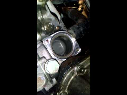 2000 VW Passat Thermostat Replacement