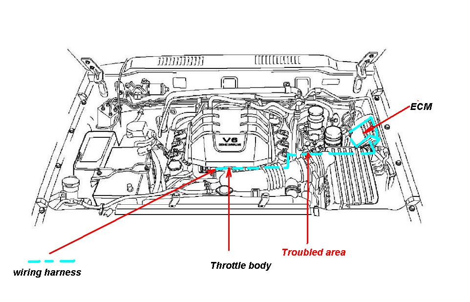 2004 Isuzu Engine Diagram Wiring Onlinerh20119tokyorunningsushide: Engine Diagram 2002 Isuzu Rodeo 2 2l At Gmaili.net