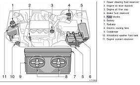 2002 toyota camry fuse box guide 2002 toyota camry fuse box diagram image details  2002 toyota camry fuse box diagram