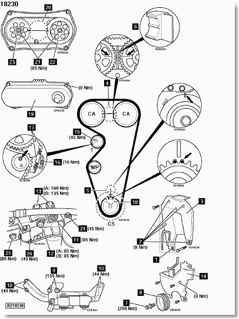 ford focus timing belt diagram