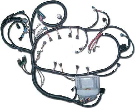 99 S10 4.3 Engine Wiring Harness Picture