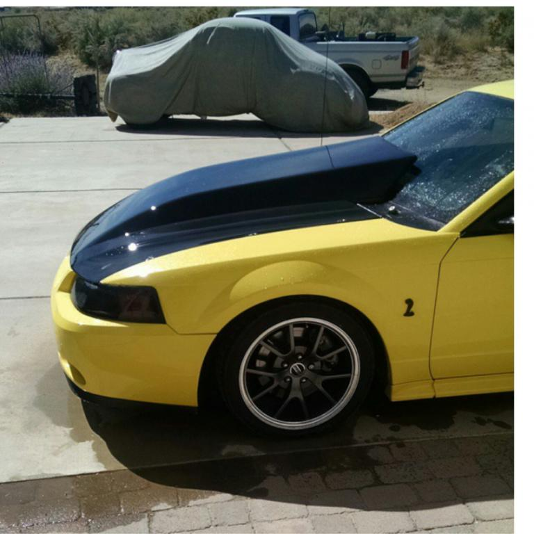 For Sale* Mustang hood and new ford focus bumper  TrueStreetCars.com
